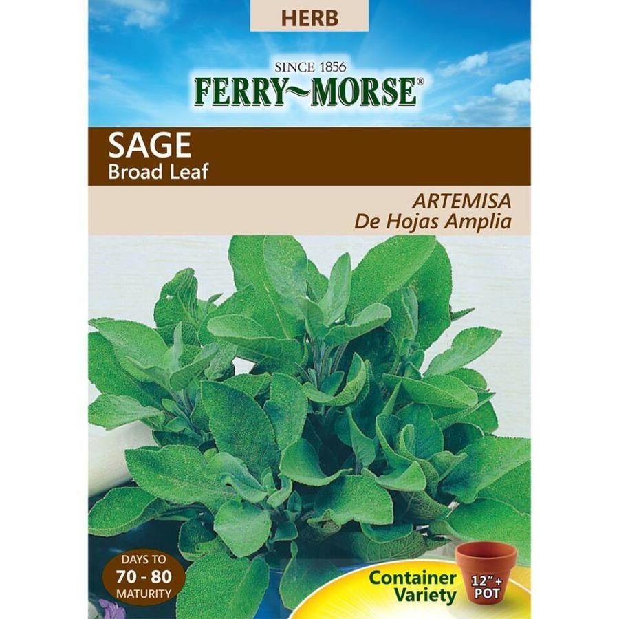 Ferry-Morse 1-Gram Sage Broad Leaf (L0000)