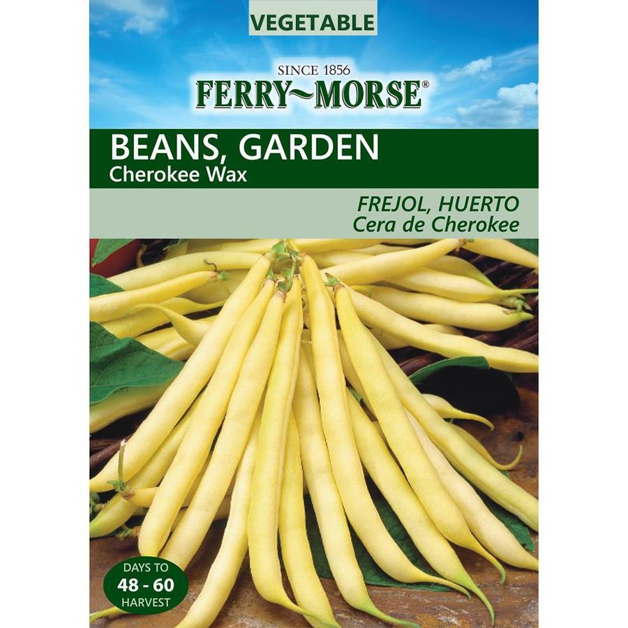 Ferry-Morse 21-Grams Bean Cherokee Wax (L0000)