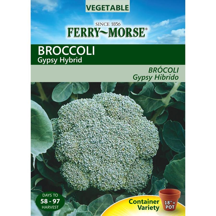 Ferry-Morse 125-mg Broccoli Gypsy Hybrid (L0000)