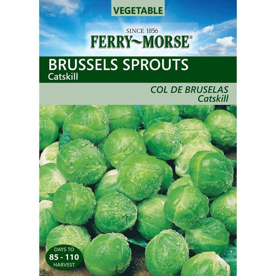 Ferry-Morse 1.4 Gram(S) Brussels Sprouts Catskill (L0000)