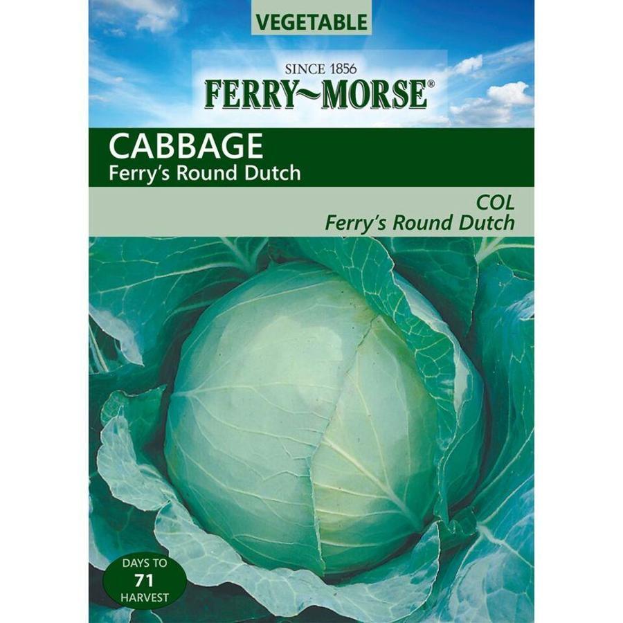 Ferry-Morse 1 Gram(S) Cabbage Ferry's Round Dutch (L0000)