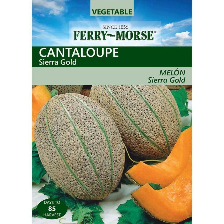 Ferry-Morse 2.5 Gram(S) Cantaloupe Sierra Gold (L0000)
