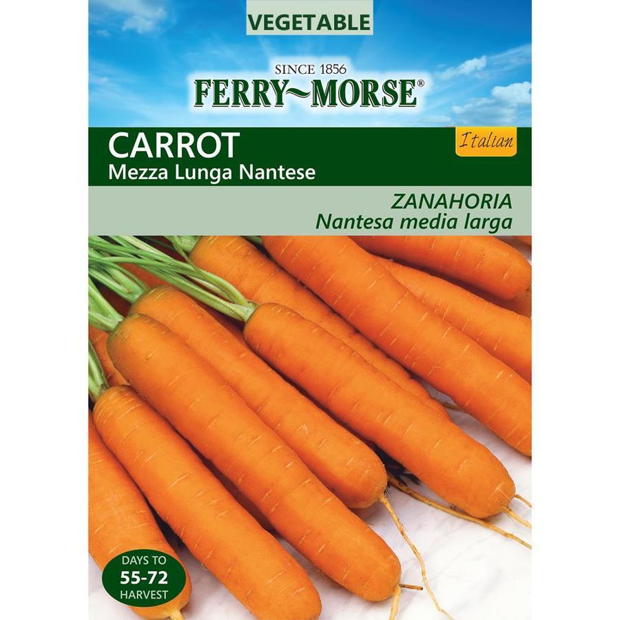 Ferry-Morse 200-mg Carrot Mezza Lunga Nantese (L0000)