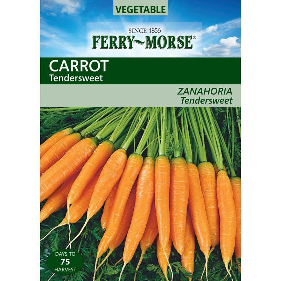Ferry-Morse 2.1 Gram(S) Carrot Tendersweet (L0000)