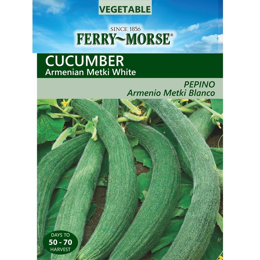 Ferry-Morse 1.75-Grams Cucumber Armenian Metki White (L0000)