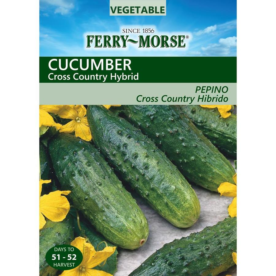 Ferry-Morse 1.2-Grams Cucumber Cross Country Hybrid (L0000)