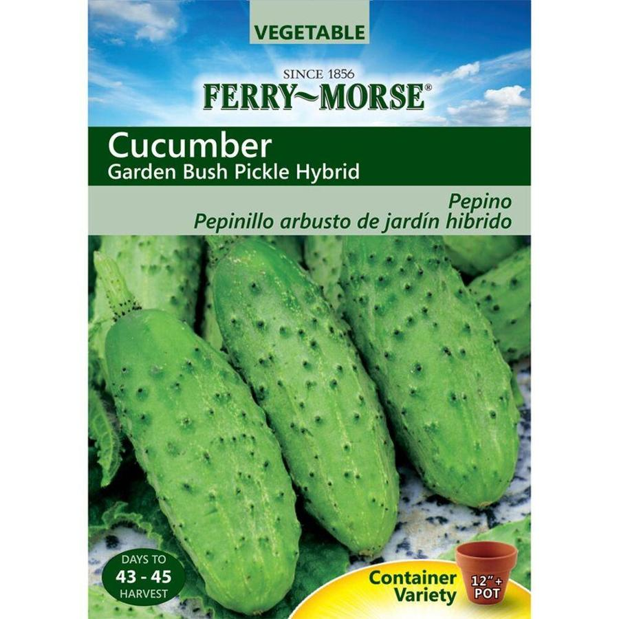 Ferry-Morse Cucumber Garden Bush Pickle Hybrid