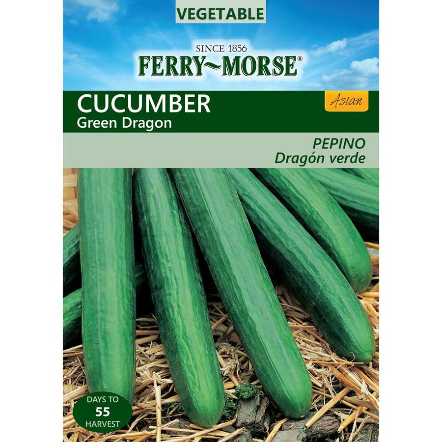 Ferry-Morse 300-mg Cucumber Green Dragon (L0000)