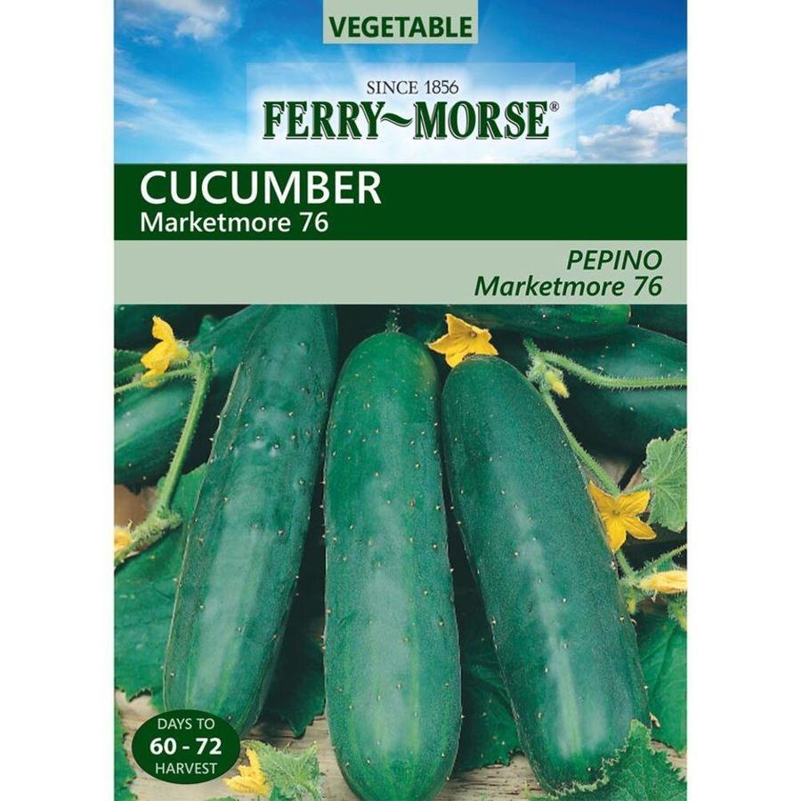 Ferry-Morse Cucumber Marketmore 76