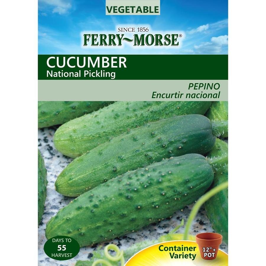 Ferry-Morse 2.3-Grams Cucumber National Pickling (L0000)