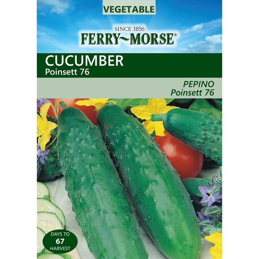 Ferry-Morse 3-Grams Cucumber Poinsett 76 (L0000)