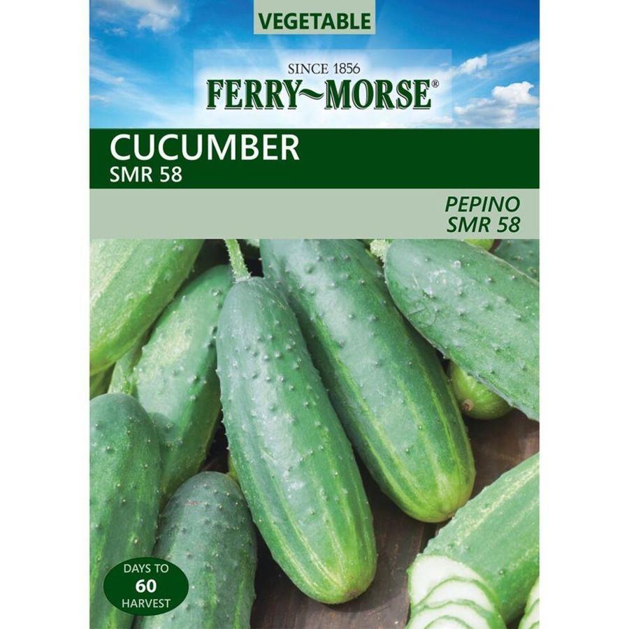 Ferry-Morse Cucumber SMR 58