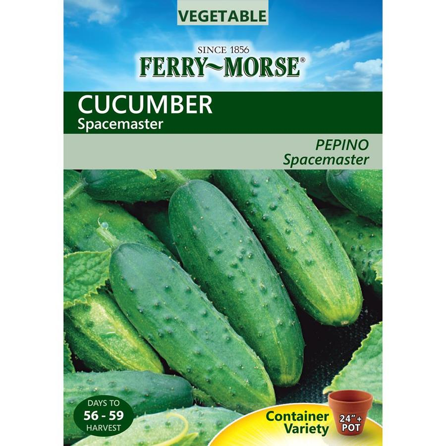 Ferry-Morse 1.2-Grams Cucumber Spacemaster (L0000)