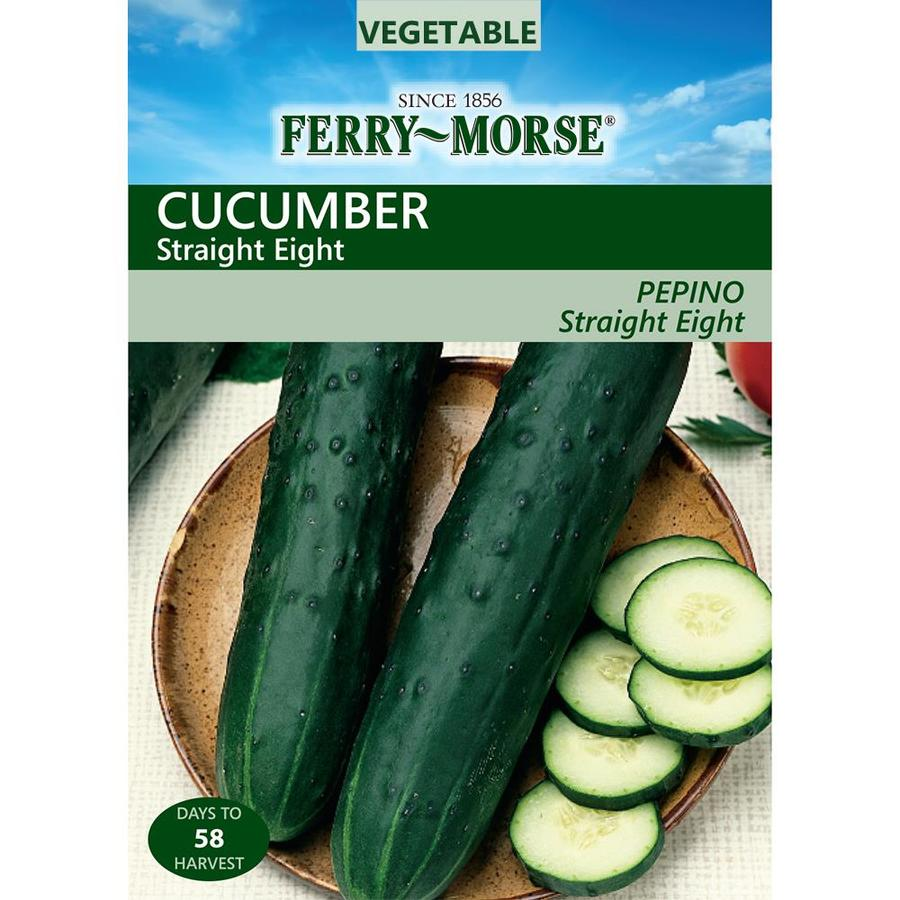 Ferry-Morse 3-Grams Cucumber Straight Eight (L0000)