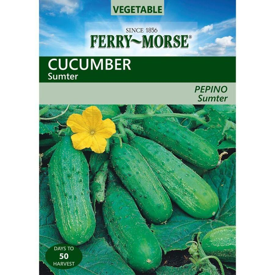Ferry-Morse Cucumber Sumter