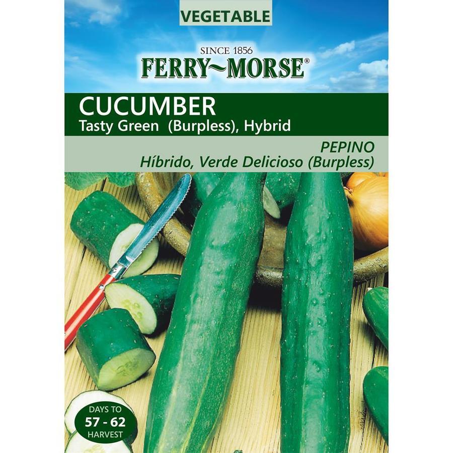 Ferry-Morse 700-mg Cucumber Tasty Green Burpless Hybrid (L0000)