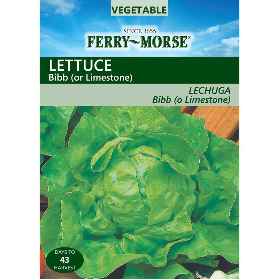 Ferry-Morse Lettuce Bibb Limestone