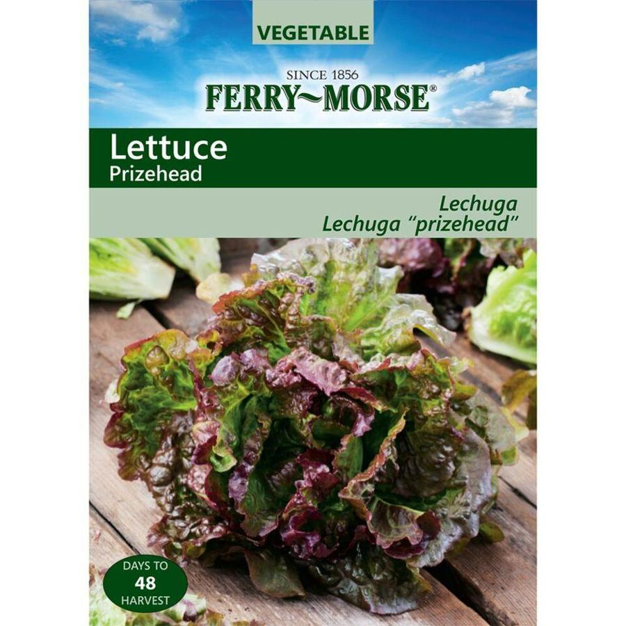 Ferry-Morse Lettuce Prizehead