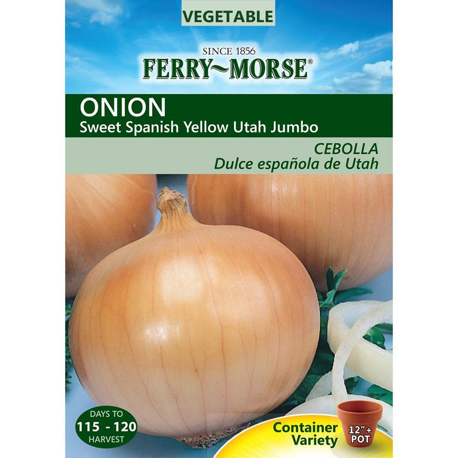 Ferry-Morse 1.7-Grams Onion Sweet Spanish Yellow Utah Jumbo (L0000)