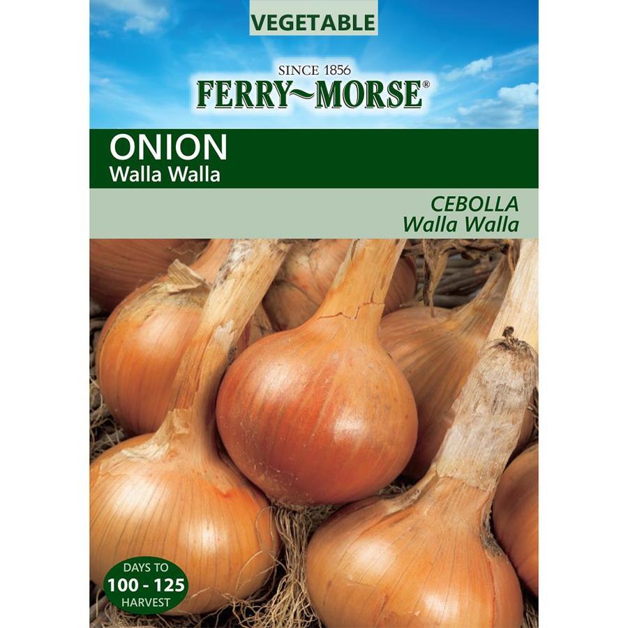 Ferry-Morse 500-mg Onion Walla Vegetable (L0000)