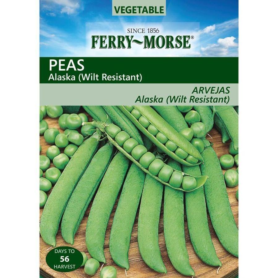 Ferry-Morse Pea Alaska Wilt Resistant