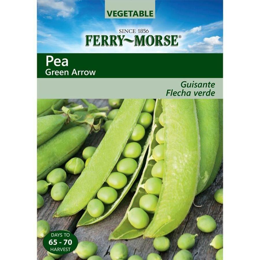 Ferry-Morse Pea Green Arrow