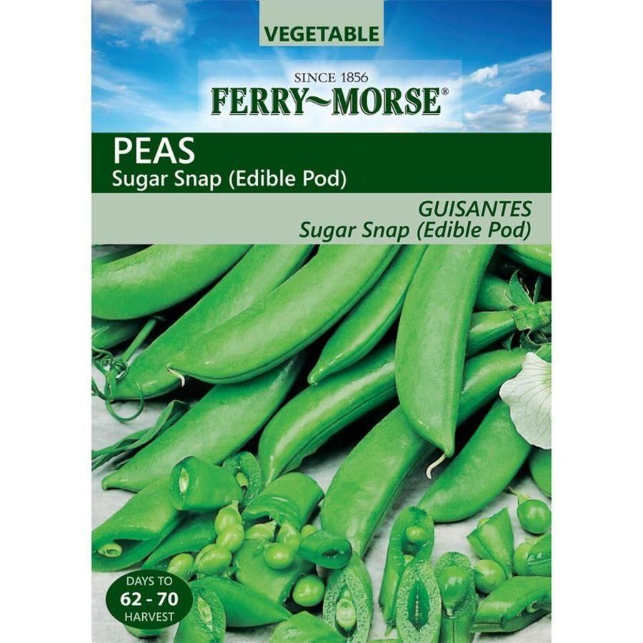 Ferry-Morse Pea Sugar Snap Edible Pod