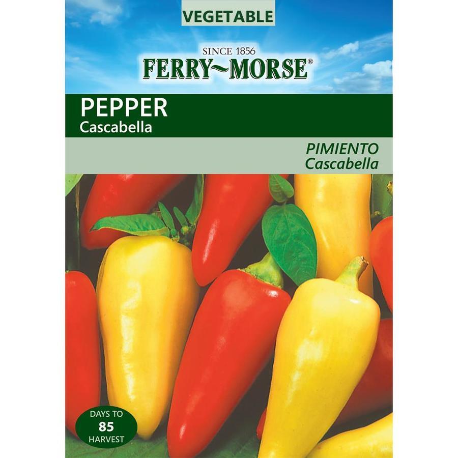 Ferry-Morse 225-mg Pepper Cascabella (L0000)