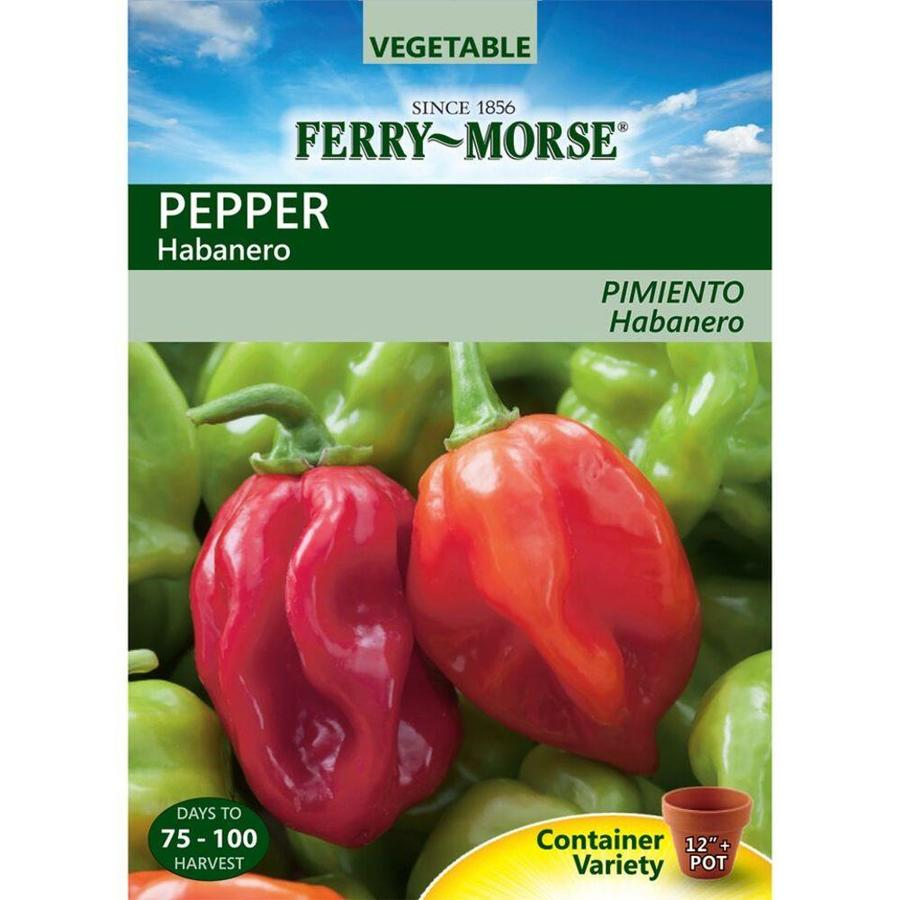 Ferry-Morse 250-mg Pepper Habanero (L0000)