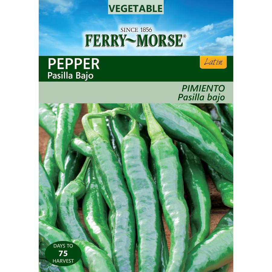 Ferry-Morse 250-mg Pepper Pasilla Bajo (L0000)