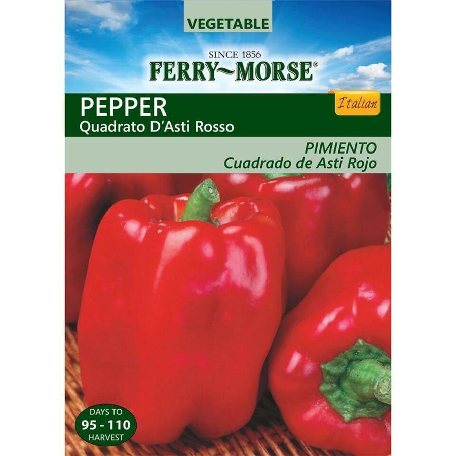 Ferry-Morse 250-mg Pepper Quadrato D Asti Rosso (L0000)