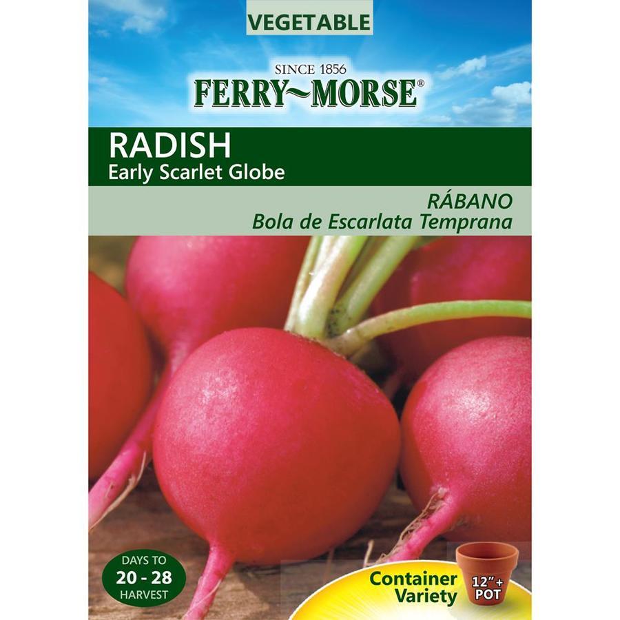 Ferry-Morse 2-Grams Radish Early Scarlet Globe (L0000)