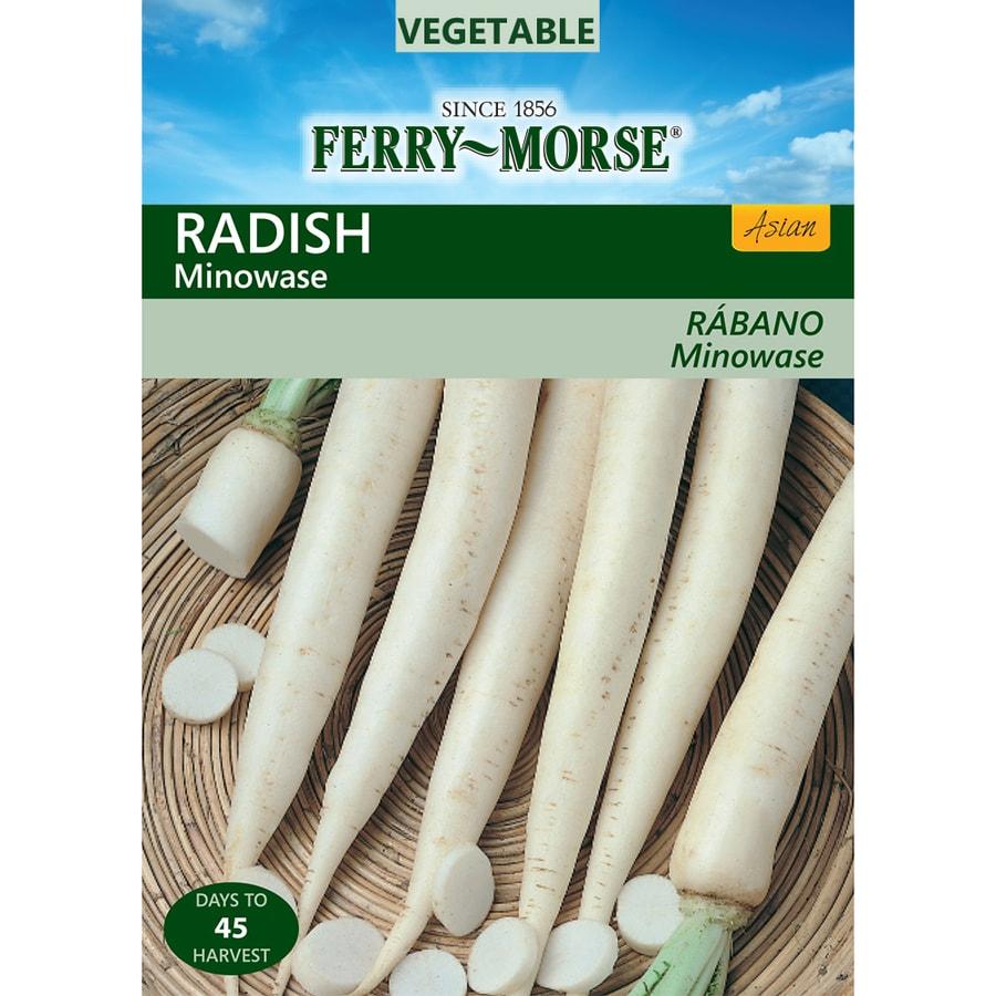 Ferry-Morse 400-mg Radish Minowase (L0000)