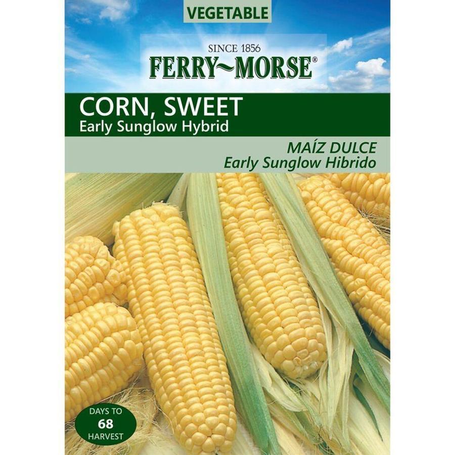 Ferry-Morse 10 Gram(S) Sweet Corn Early Sunglow Hybrid (L0000)