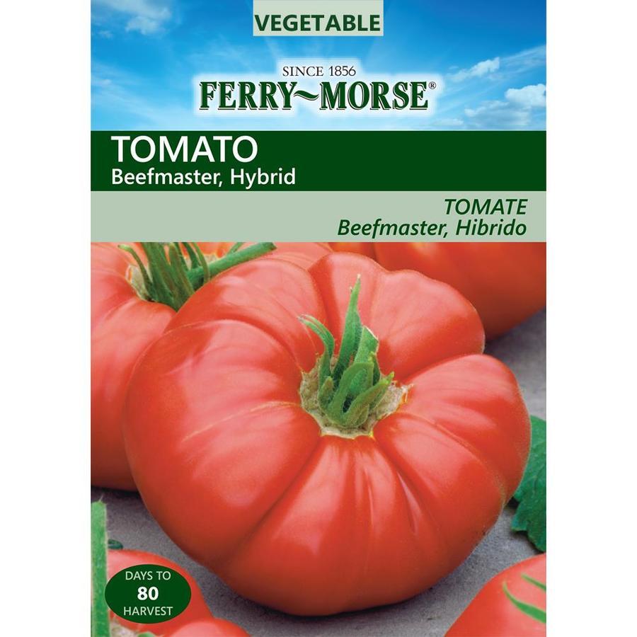 Ferry-Morse 15-Count Tomato Beefmaster Hybrid (L0000)