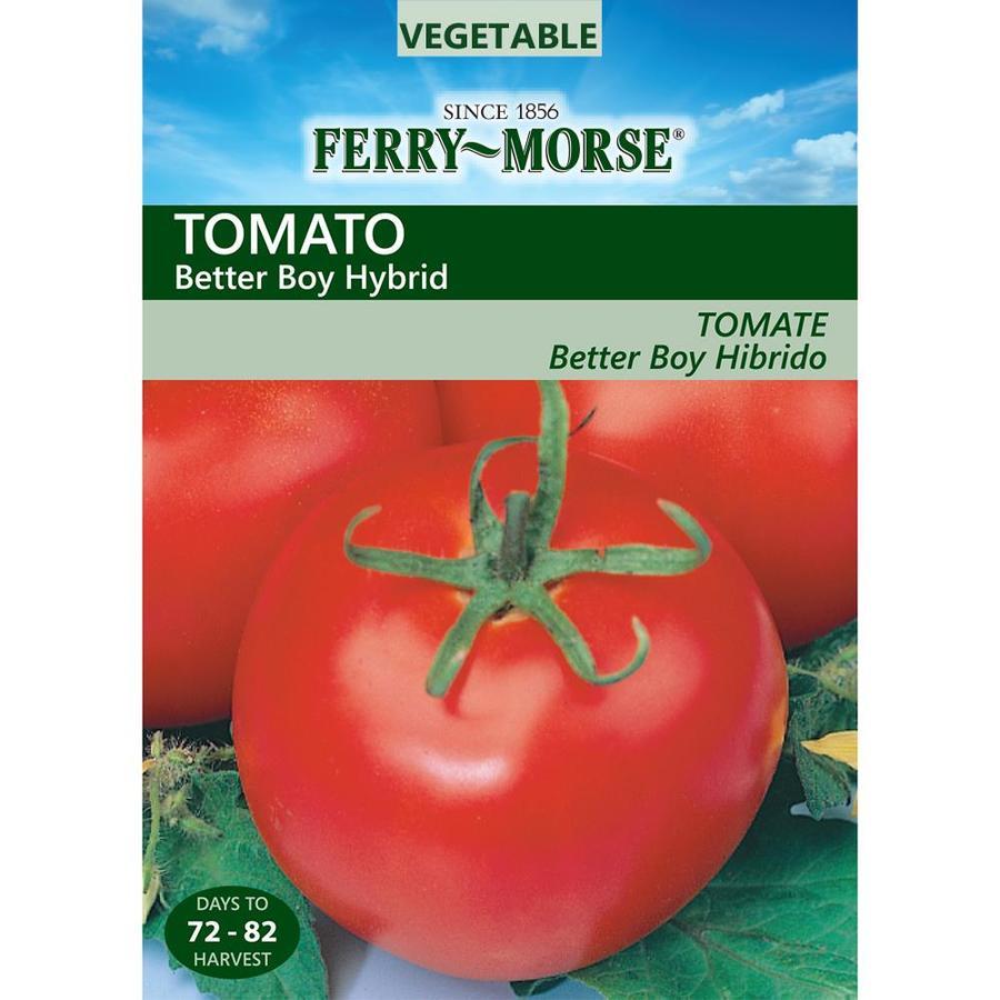 Ferry-Morse 15-Count Tomato Better Boy Hybrid (L0000)