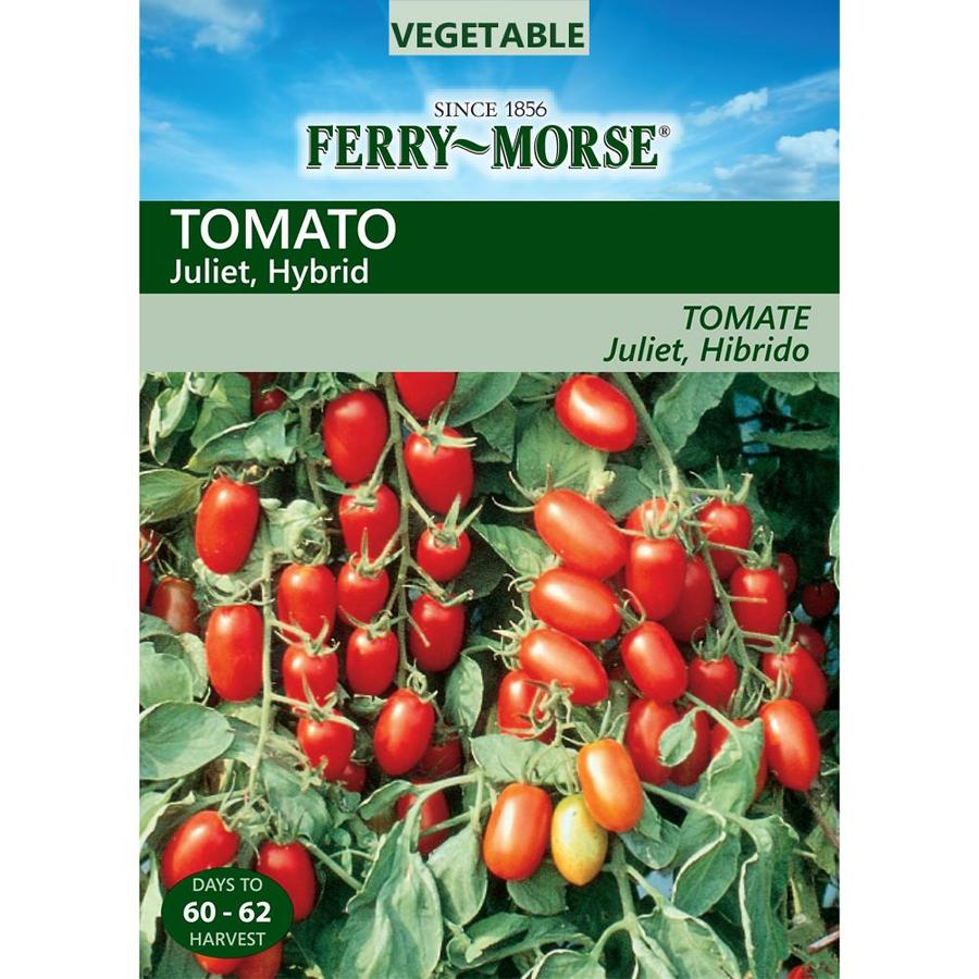 Ferry-Morse 15-Count Tomato Juliet Hybrid (L0000)