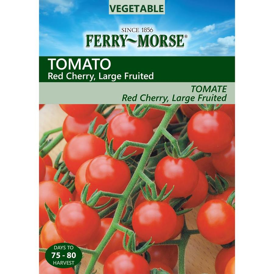 Ferry-Morse 590-mg Tomato Red Cherry Large Fruit (L0000)