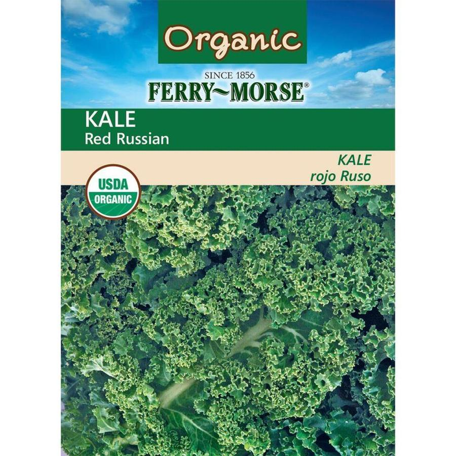 Ferry-Morse Organic Kale Red Russian