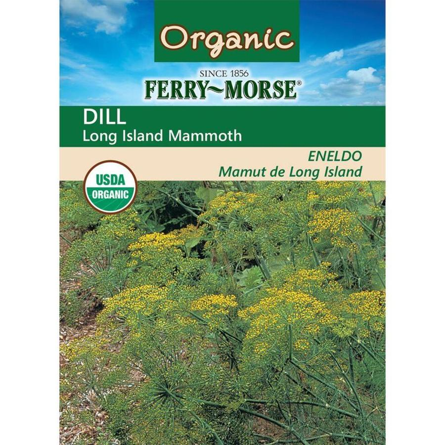 Ferry-Morse 1.6-Gram Organic Dill Long Island Mammoth (L0000)