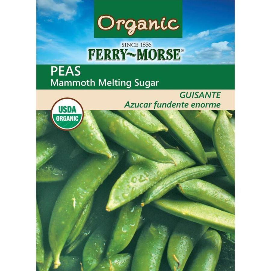 Ferry-Morse Organic Pea Mammoth Melting Sugar