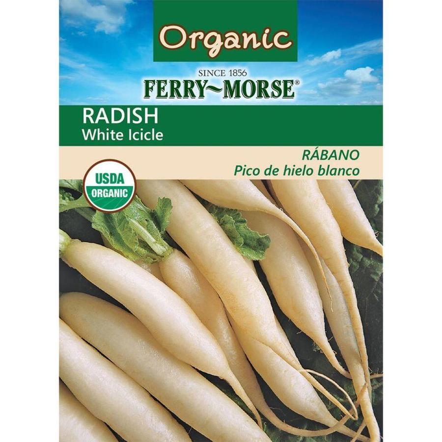 Ferry-Morse 3.5-Grams Organic Radish White Icicle (L0000)