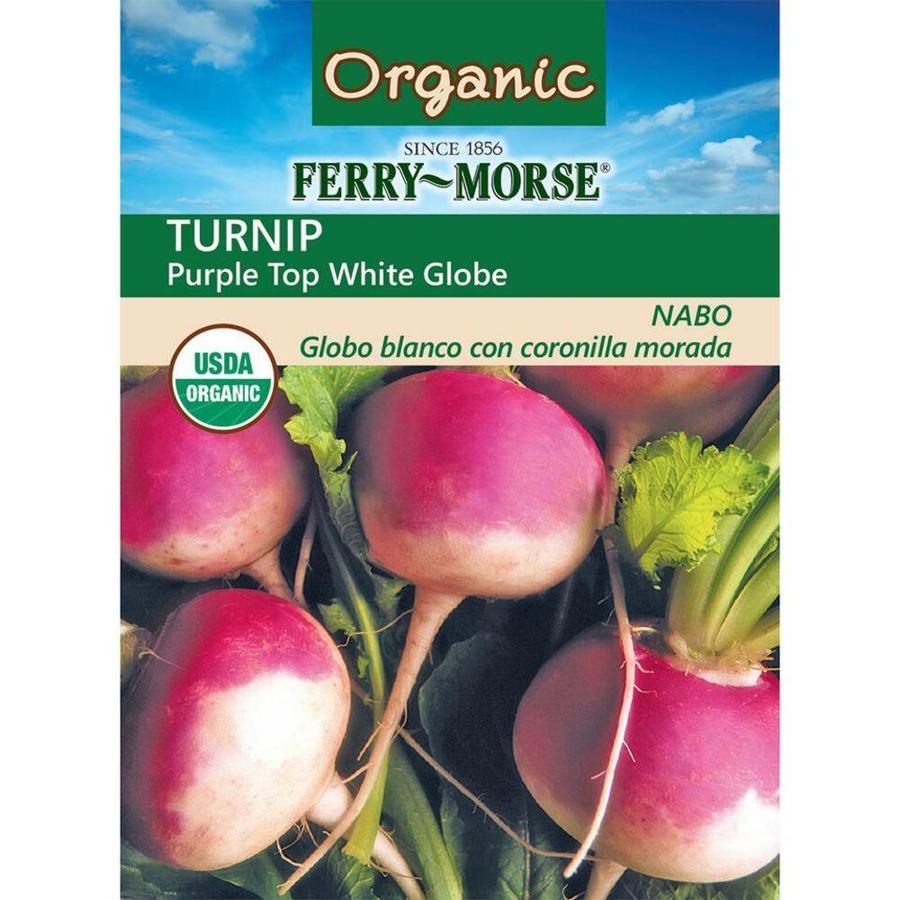 Ferry-Morse 5.8 Gram(S) Organic Turnip Purple Top White Globe (L0000)