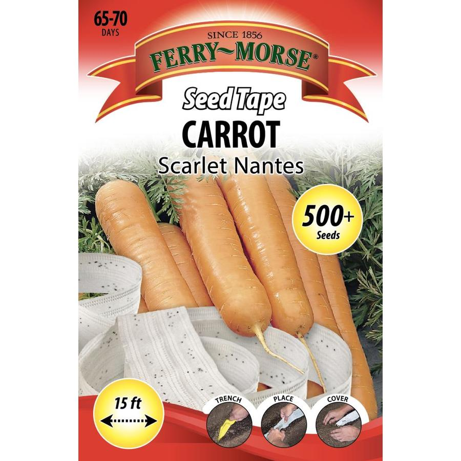 Ferry-Morse Seed Tape 500-Count Seed Tape Carrot Scarlet Nanted (L0000)