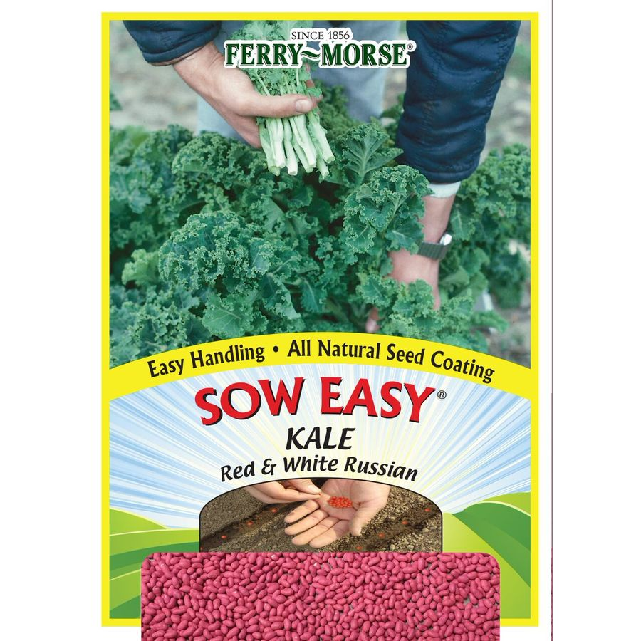 Ferry-Morse Sow Easy Kale Red & White Russian