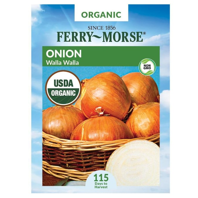 Ferry-Morse 2.5 Gram(s) Onion Walla Walla Vegetable (Seed Packet) in the  Vegetable & Herb Seeds department at Lowes.com