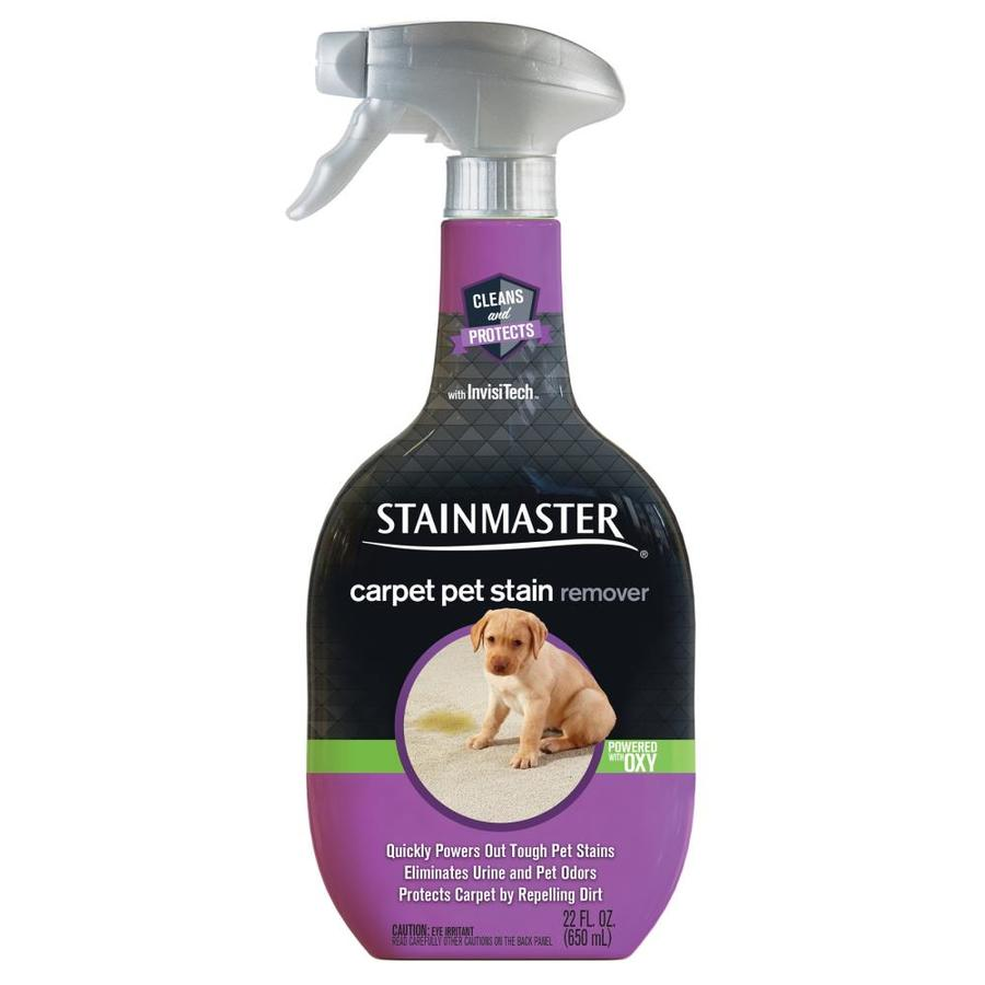 Stainmaster 28 Oz Cat And Dog Stain Odor Remover Sprayer