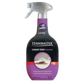 STAINMASTER 28-oz Carpet Cleaner