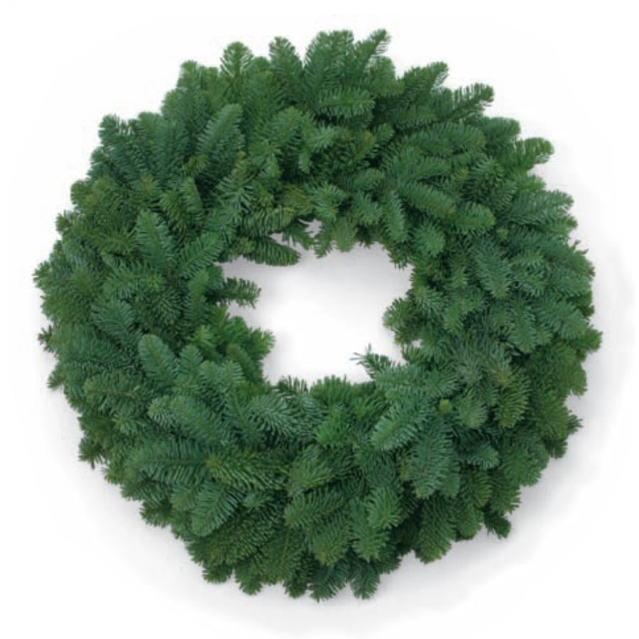 Shop 22-in Fresh Noble Fir Christmas Wreath with Lights at Lowes.com
