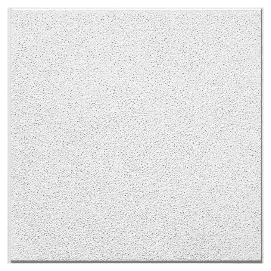 Shop armstrong 24 x 24 homestyle pebblebrook ceiling panel 16 armstrong 24 x 24 homestyle pebblebrook ceiling dailygadgetfo Images